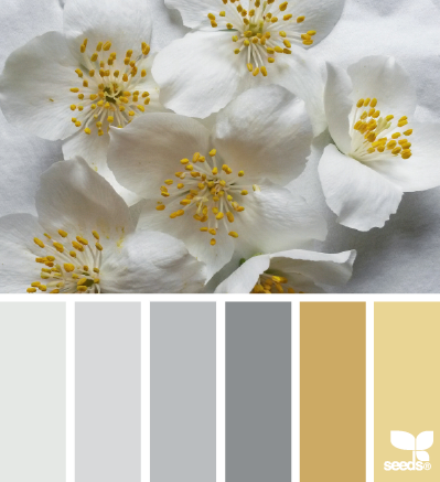 Design Inspiration : Flora-Tones